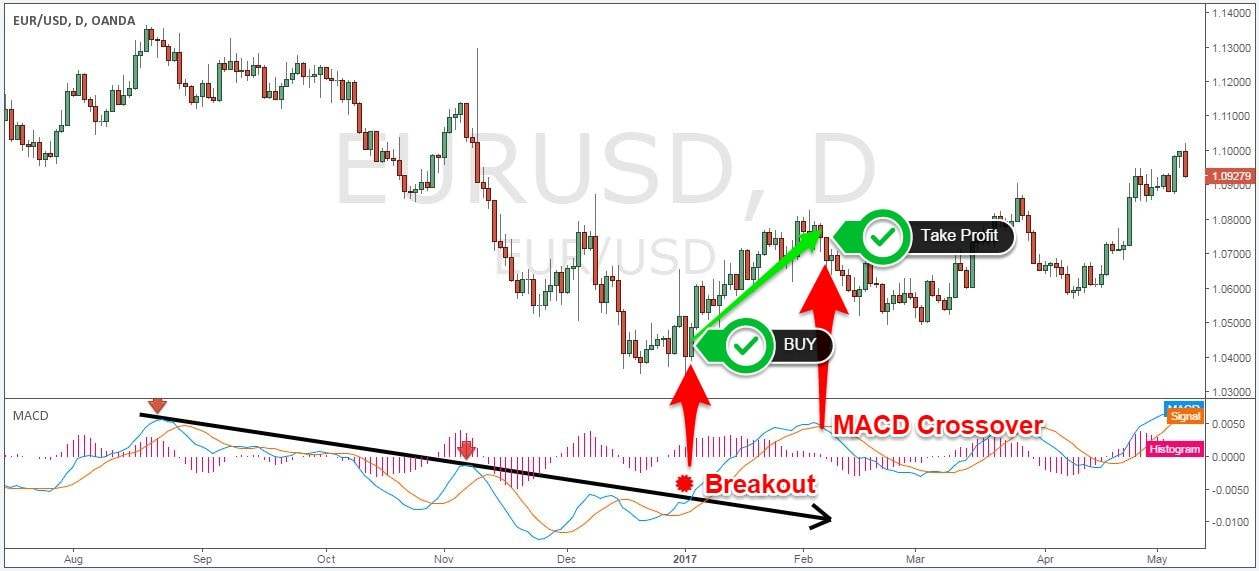 trend indicator never lose again